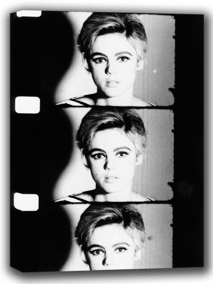 Edie Sedgwick. Andy Warhol Superstar. Film/Movie Actress. Black and White Canvas. Sizes: A4/A3/A2/A1 (002413)